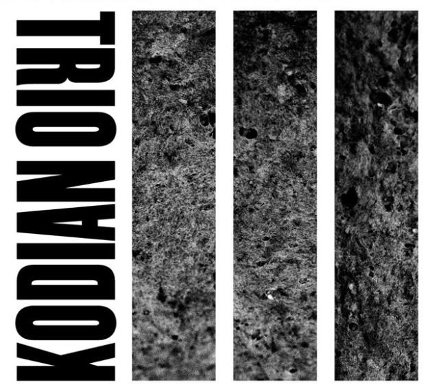 KODIAN TRIO album III front cover
